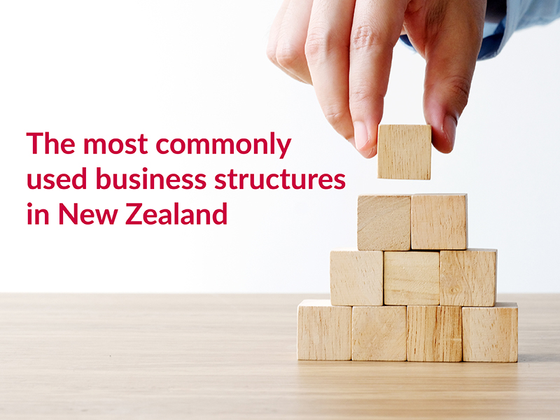 There are four common options for structuring a business in New Zealand